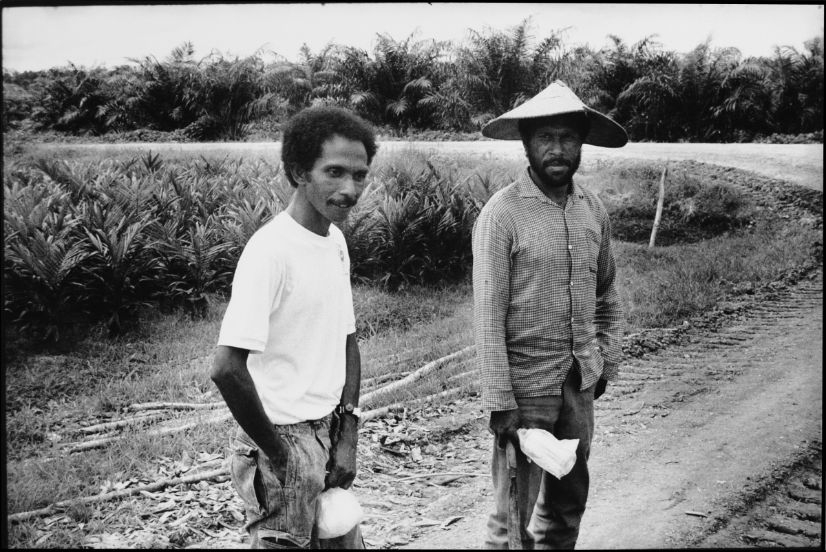 2 palm oil plantation labourers