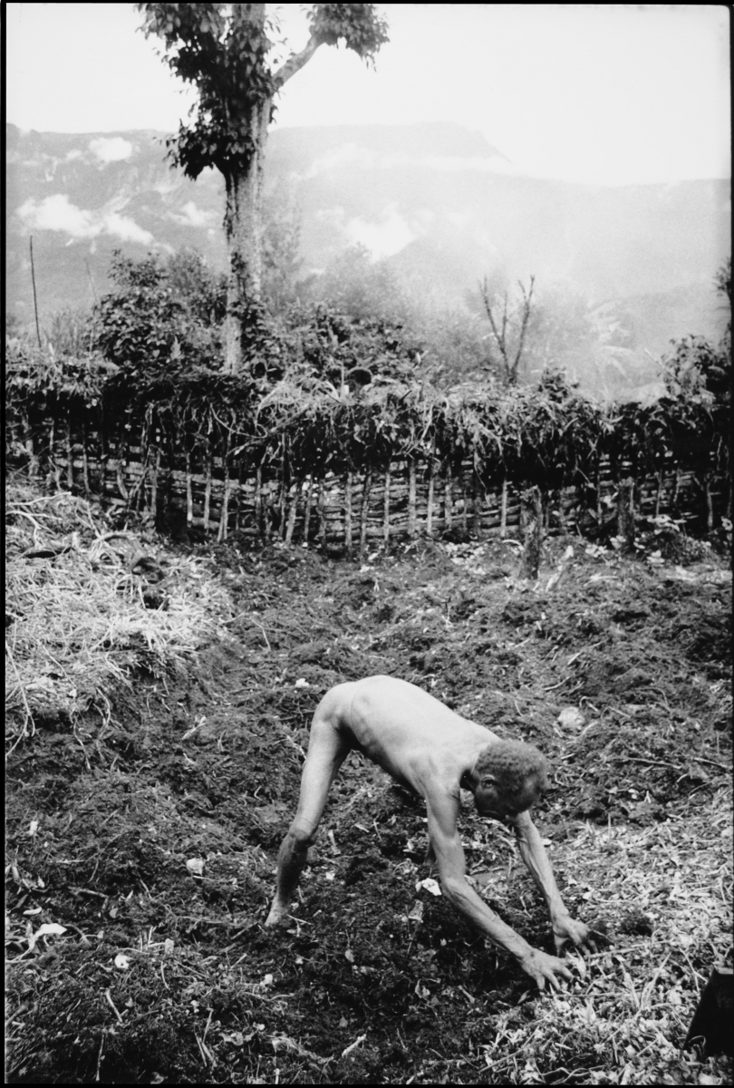 man digging with hands